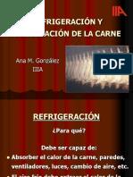 Refrigeracion y Congelacion Faotilc2010
