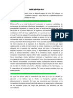 METABOLISMO (Fe, ca.docx