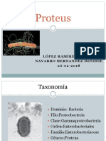 Proteus.pptx