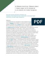 Piroplasmosis Por Babesia Microti
