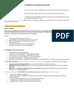 Tema 2 Mision, Metas y Objetivos Empresariales