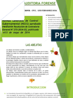 251331009-Normas-Generales-de-Control-Gubernamental.pptx
