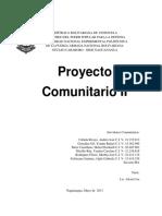 Proyecto Comunitario II
