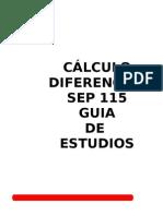 551321 Guia de Calculo Diferencial