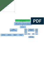 Mapa Conseptual de Estandares de Cableado