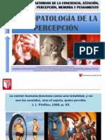 04.Psicopatologia de La Percepcion.ppt