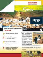 boletin_papa_panao.pdf