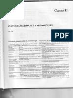 11. Anatomia secţională a abdomenului.pdf