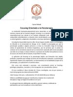Curso Virtual F.O.T. IFDI.pdf