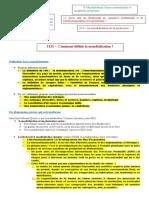 2131- Comment définir la mondialisation.doc