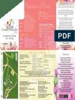 Lanark FlowerFest 2018 - 1