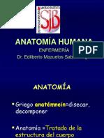 Primera Clase Anatomía