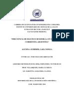 TFI Scherer Lara.pdf