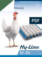 Hyline W36 2017