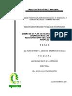 Tesis de Valorizacion de Residuos Solidos Organicos