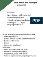 Baru Nyeri Lokal Dan Refered Pain Dari Organ Uropoetika Dr. Ahmad Bi Utomo