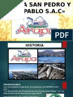 ARAPA-Diaposotivas-finalessssssssssssssssssssssssssssss.pptx