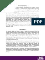 Investigacion Metodo Montecarlo