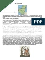 Forma de cultivo y alimentación de los Mayas.docx
