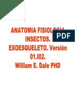 Anatomia de Insectos Exoesqueleto