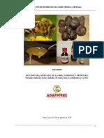 Estudio Del Mercado de Miel 2014
