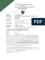 Exp. 230 - 2015. Lizbet Huiza Conde