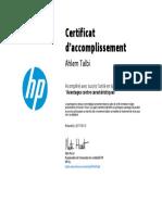 Certificate (12)