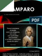 EL AMPARO