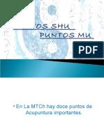 acupunturaipuntosshuymu-.pdf