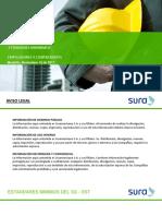 Presentacion Estandares Minimos 2017 GAL_ARL.pdf