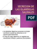 secrecion-glandulas-salivales.ppt
