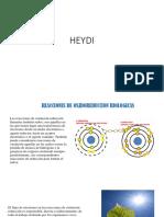 HEYDI (1)