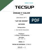 INFORME ONDAS Y CALOR 1.docx
