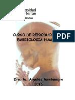 Montenegro, M. A. - Embriología 2016