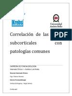 Lesiones subcorticales