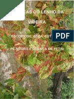 Doenças do Lenho da Videira.pdf