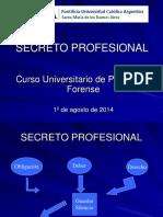 Secreto Profesional