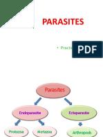 Parasites ..Practical 2 - Ppt
