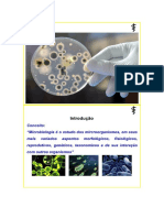 Slides Microbiologia