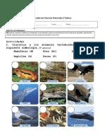 Prueba de Cs. naturales 2° vertebrados e invertebrados