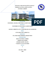 CONTAMINACION ADMOSFERICA.docx