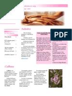 Newsletter Los Cuidadores - septiembre-