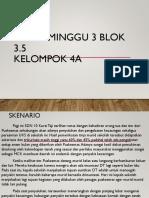 Pleno Minggu 3 Blok 3.5