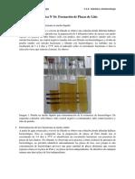 P16 Formación de Placas de Lisis