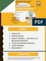MACRONUTRIENTES%2F Fundamentos de La Ing. Ambiental