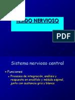 tejidonervioso-140330100404-phpapp02