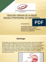 EXPOSICION 9.pdf