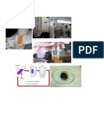 biologia imprimir