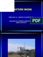FRATURA NASAL V.1.3