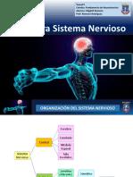 tarea3migdaliromeroneurocienciasslideshare-170226144353.pdf